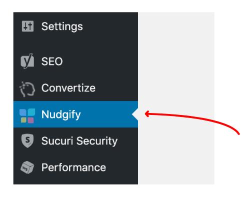 nudgify wordpress plugin